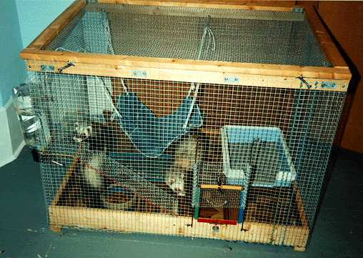 homemade ferret cage plans